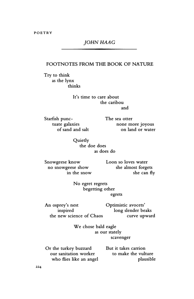 poem – RUN!